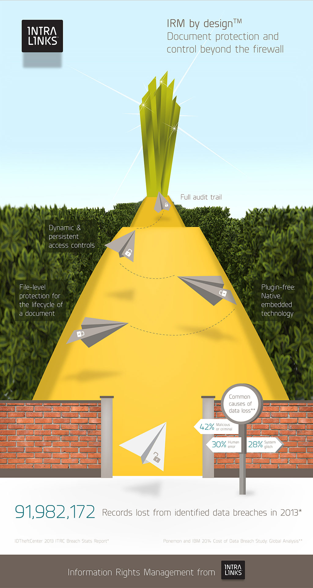 Information Rights Management Infographic