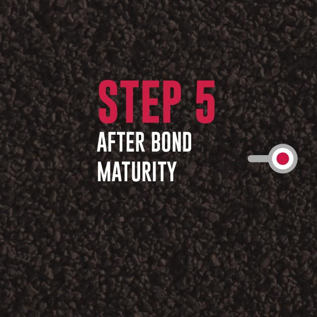 Step 5: After Bond Maturity