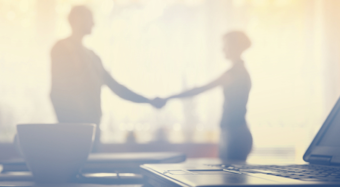 The Art of Partnering: Alliance Management